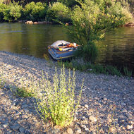 A private boat tied up at camp on the South Fork of the American River.