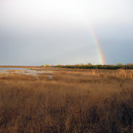 A rainbow during a respite in a rainstorm in the marshland north of San Francisco Bay (across from Infineon Raceway on Highway 121).
