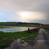 A flooded meadow near marshland across from Infineon Raceway north of San Francisco Bay (Roche Winery is the barn looking building in the background).