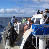 A catamaran outbound from Maui to Molokini Crater for snorkeling.