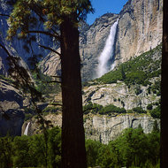Yosemite Falls from the valley floor.