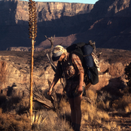 A backpacker inspecting an Agave cactus on the trail in the Grand Canyon.