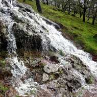 A seasonal waterfall on the Montini Preserve in Sonoma.