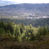 A view of Sonoma Valley from Hood Mountain Regional Park.