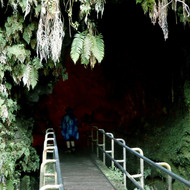 Entering the Thurston Lava Tube at Hawai'i Volcanoes National Park.