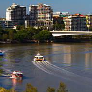 City Cats and City Hopper, commuter transport on the Brisbane River near Captain Cook Bridge.