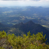 Panoramic view east and south from the summit of Mount Warning, the Pacific Ocean in the distance on the left of frame.