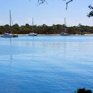 Yachts moored on the Noosa River.
