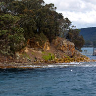 Isle of the Dead, a cemetery of Port Arthur convict prison and the jetty.