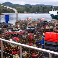 Lobster pots waiting for deployment at Strahan harbor.