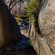 The Sphinx and Turtle Rock walking trail winds through the granites.