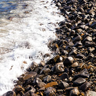 Rocky beach of Winch Cove.