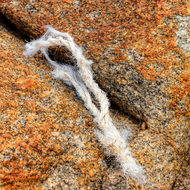 Tuft of poly rope wedged in the rock.